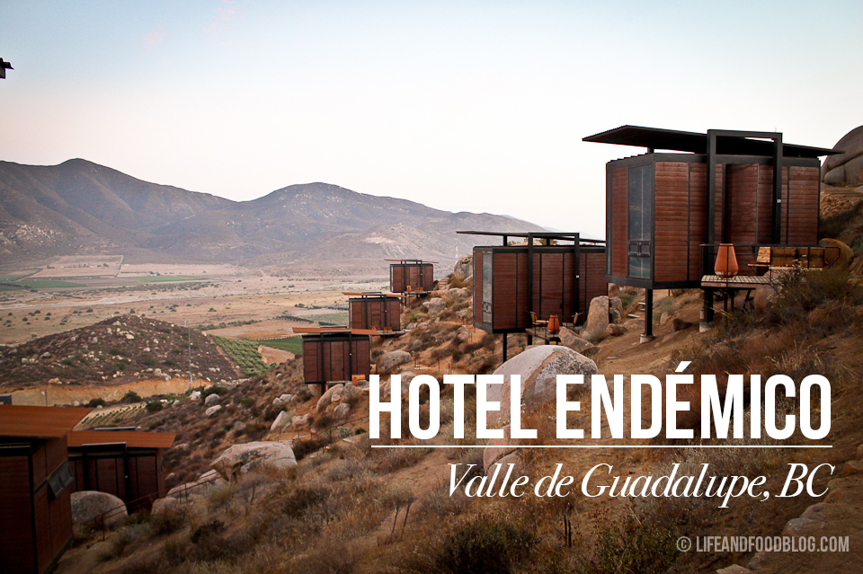 hotel_endemico
