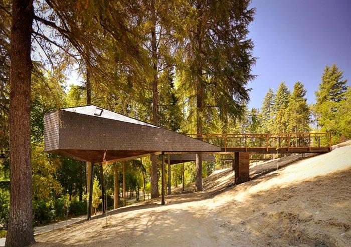 Tree_Snake_Houses_Pedra_Salgadas_Portugal_14
